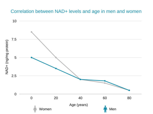 What Causes NAD Levels To Drop